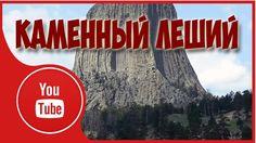 #ИнтересныеФакты Про Древний Лес