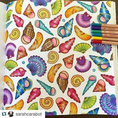 Instagram media jardimflorestaoceano - Cores  vibrantes e iluminadas....#johannabasford #jardimflorestaoceano #oceanoperdidotop #lostocean #editorasextante