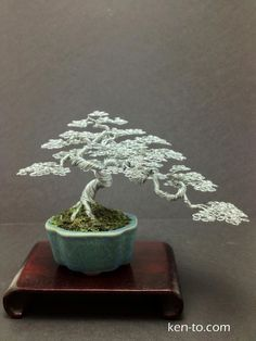 Wire Bonsai Tree :: I wonder how many hours lie behind these sculptures. By Ken To, California
