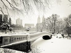 #manhattan, central park, #bowbridge. Amazing picture #newyork #zhotel #travel