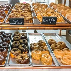 America's Best Doughnuts: tons in chicago, nyc, and a few in texas