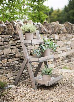 Aldsworth Pot Ladder - Spruce on sale in the UK along with best prices on many other home and garden items
