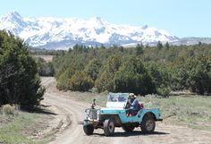 Ralph gives Oprah a guided tour of the ranch in his vintage 1948 Jeep, which he acquired with the property.