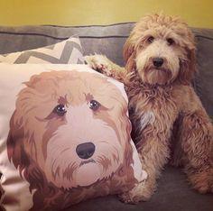 Custom Pet Portrait | Custom Pet Pillow | Fiance Gift | Pet Art Illustration | Dog Portrait | Cat Portrait | Dog Lover Gift | Pet Loss Gift by DesignMyDog on Etsy https://www.etsy.com/listing/491663885/custom-pet-portrait-custom-pet-pillow