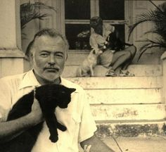 Ernest Hemingway nella sua casa a Key West Ernest Hemingway, Hemingway Cats, Crazy Cat Lady, Crazy Cats, I Love Cats, Cool Cats, Animals And Pets, Cute Animals, Celebrities With Cats
