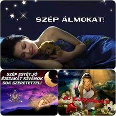 Good Night, Album, Humor, Movie Posters, Nighty Night, Humour, Film Poster, Funny Photos, Funny Humor