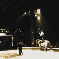 Sirkus Finlandia 2012