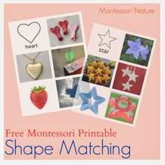 Free: Shape match with real pictures to shape.  Montessori Nature: Free Montessori Printables