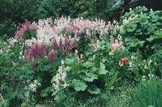 Tasha Tudor's Garden | Design*Sponge