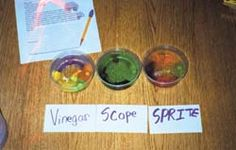 ARticle on Gobstopper experiment for the Scientific Method - extend