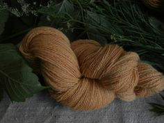 Natural plant dyed wool yarn in yellow. FINGERING sock yarn weight. Organic. Suitable for knitting tablet weaving, crochet and nalbinding.