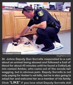 It's so sad what people do to their pets.  But so wonderful what they do to rescue them