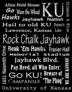 Jayhawk Memories...I want this in crimson & blue!