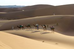 Becoming one with the elements: Trekking in Southern Morroco. Simply breathtaking!