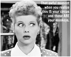 "I am frequently heard muttering, ""Not my circus, not my monkeys!"". This is perfect!"