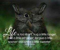 Life is too short, hug a little longer, love a little stronger, forgive a little sooner and smile a little sweeter.