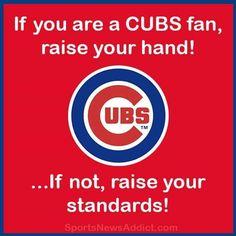 Chicago Cubs Fans, Chicago Cubs Baseball, Bear Cubs, Bears, Cubs World Series, Cubs Team, Raise Your Standards, Go Cubs Go, Fun Group