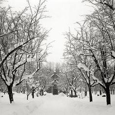 Tønsberg graveyard