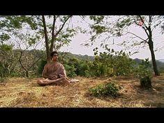 Der Weg des Buddha (54:49)