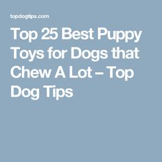 Top 25 Best Puppy Toys for Dogs that Chew A Lot – Top Dog Tips