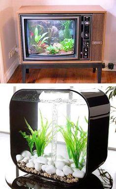 35 Unusual Aquariums and Custom Tropical Fish Tanks for Unique Interior Design