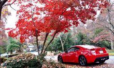 LIGHTNING RED BRZ Compilation - Page 6 - Scion FR-S Forum   Subaru BRZ Forum   Toyota 86 GT 86 Forum   AS1 Forum - FT86CLUB