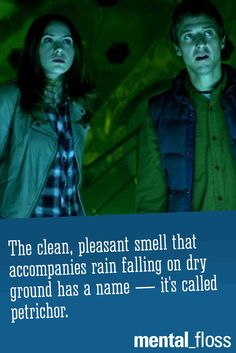 "The meaning of ""petrichor"" plays a role in the Doctor Who episode ""The Doctor's Wife."""