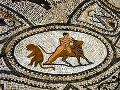 Roman Mosaic. Hercules and Bull. Volubilis, Marocco.