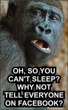 When we find it difficult to sleep, this is indeed very annoying, especially tomorrow we have to get up early and have lots of work waiting. Can't sleep memes come with you as an expression of your feelings, share this interesting thing with your friends #meme #cantsleep #cantsleepmeme #funnypicture #funnymonkey Sleep Meme, Can't Sleep, Today Meme, Getting Up Early, Insomnia, Waiting, Funny Pictures, How To Get, Feelings