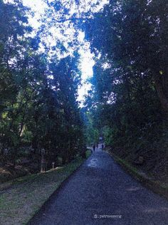 Bandar Seri Begawan, Sidewalk, Side Walkway, Walkway, Walkways, Pavement