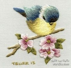 Price ZAR This kit is suitable for all levels including beginner Stitches include long & short stitch split stitch satin stitch Embroidery Stitches Tutorial, Embroidery Needles, Crewel Embroidery, Embroidery Techniques, Ribbon Embroidery, Cross Stitch Embroidery, Embroidery Patterns, Long And Short Stitch, Thread Painting