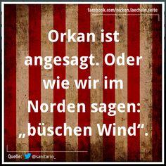 Büschen Wind :) #Schnack #EuropaPassage #EuropaPassageHamburg #Hamburg #Hamburgisch #Norddeutsch #Moin #schnacken #words #welovehh