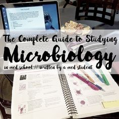 How To Study Microbiology Read more: https://writtenbykanra.blogspot.com/2018/02/study-microbiology.html studying study tips med school med student medblr studyblr study habits study inspiration