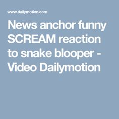 News anchor funny SCREAM reaction to snake blooper - Video Dailymotion