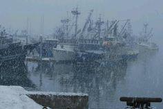 Snow falling on fishing boats in Alaska.