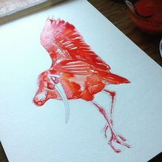 Scarlet Ibis in Vermillion Hue WIP. #scarlet #ibis #vermillion #hue #bird #birdwatching #paint #wip #process #love #colour #drawing #sketching #doodling #art #artist #pencil #graphite #nature #aviary #creature #watercolor #watercolour #illstration #expression #catgraff #strathmoreart @strathmoreart @holbeinartistmaterials @bird_kingdom