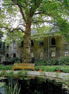 Tuin, Dordrechts Museum, Dordrecht, Zuid-Holland.