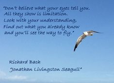 """Jonathan Livingston Seagull """"You'll see the way to fly. Favorite Quotes, Best Quotes, Funny Quotes, Top Quotes, Jonathan Livingston Seagull Quotes, Uplifting Quotes, Inspirational Quotes, Motivational, Richard Bach Quotes"""