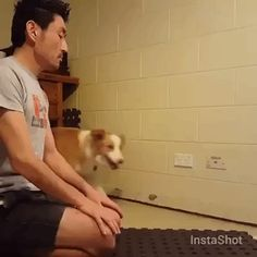"Adorable! A dog and his human ""namaste"" each other http://wld.mn/1TeTRuW Technically neither of them is doing a ""namaste"" since that's a verbal greeting..."
