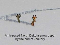 "North Dakota?!  Can we photo shop that to say ""the Rockies""?!"