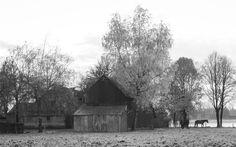 Arne Olivier Fotografie : Old Horse Farm