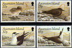 Ascension Islands 1994 Birds Set Fine Mint