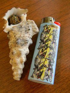 what? shell pipe..    ( #marijuana #cannabis ) http://www.pinterest.com/thathighguy