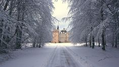 Winter time at Brodie Castle - Scotland.