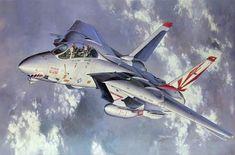 F-14A Tomcat (Shigeo Koike)