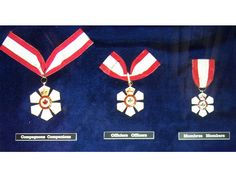 Achieve the Order of Canada for work involving the improvement of Canadian attitudes and actions toward the environment. Order Of Canada, Family Foundations, Cool Countries, Montreal, Take That, Drop Earrings, Environment, Entertainment, Image