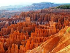 Bryce Canyon National Park, Utah - Canyon, Cliffs, Colorful, Desert  This is my next hiking trip. here here