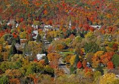 Autumn in the Village of Hammondsport, NY Original Fine Art Photography Wall Art Photo Print. What could be more lovely than a rustic little village nestled in the hill of the southern tier of NY state, Hammondsport. Beautiful, unique and all original, prints by Joan Wilcox- Glanville. Each print comes in a clear resealable archive bag ready for framing. All are original prints and are handmade and printed by the artist on the highest quality professional luster finish 11.5 mil, 75 lb…