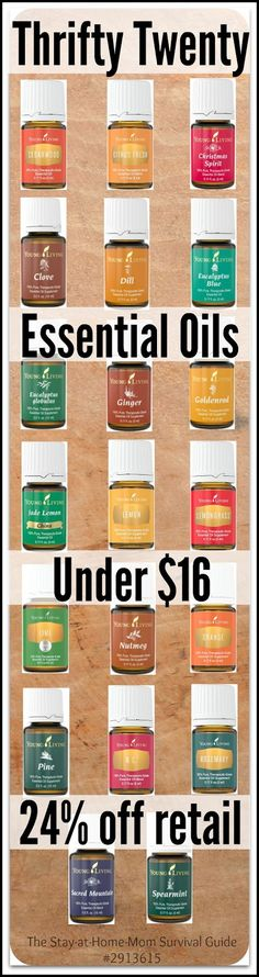 Essential oils can be affordable. Use these 4 tips to save money on essential oils and save the infographic with the most affordable essential oils: 20 oils you can try for under $16 each! Plus save 24% off retail and get freebies for signing up to try Young Living today.