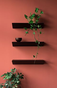 Minimalism and the De Stijl architectural movement inspired Loehr's new furniture collection, which was launched at a house designed by Oscar Niemeyer. New Furniture, Furniture Design, Wall Mounted Shelves, Shelf, Flat Ideas, Furniture Collection, Architecture, Living Spaces, Product Launch
